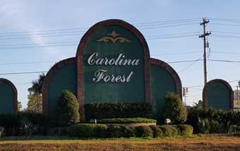 carolina-forest-a
